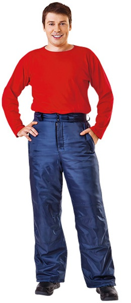 Зимние рабочие брюки ФЛАЙ в синем цвете